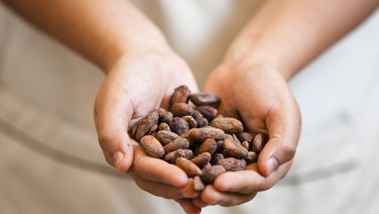 Peruvian cacao beans
